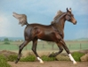 CPS_Halina_El_Kesi_-_BK_-_liver_chestnut_arabian_filly_-_OF_P_Stone_Xerxes_-_liberty_1.jpg