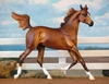CPS_Leneljaguy_Zahra_-_BK_-_chestnut_arab_filly_-_OF_P_Stone_arab_yearling_-_liberty.jpg