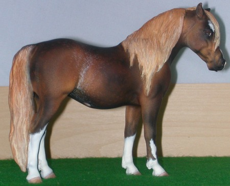 Sec. A Welsh Pony Mare