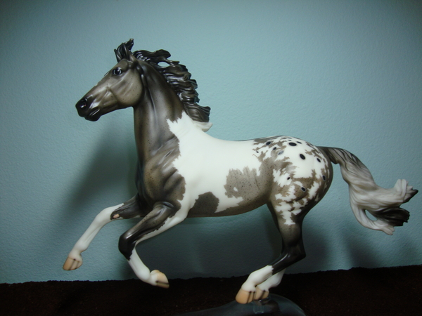 Pattern Sporthorse Stallion