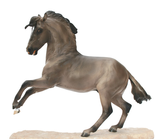 Lusitano Stallion