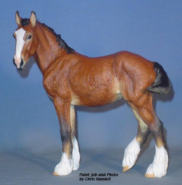 Shire Filly