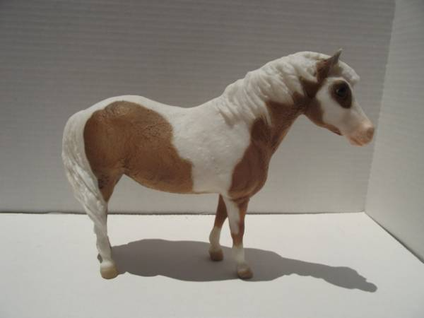 Chincoteague Pony Mare