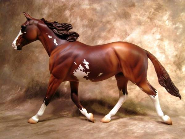 Standardbred Trotter Mare - Chestnut Extreme Sabino