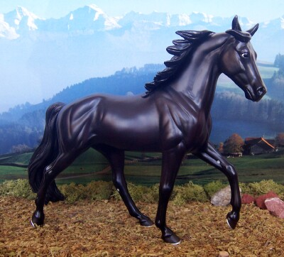 Tennessee Walking Horse, Mare