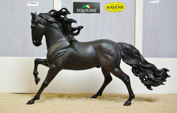 Andalusian (PRE) - Stallion