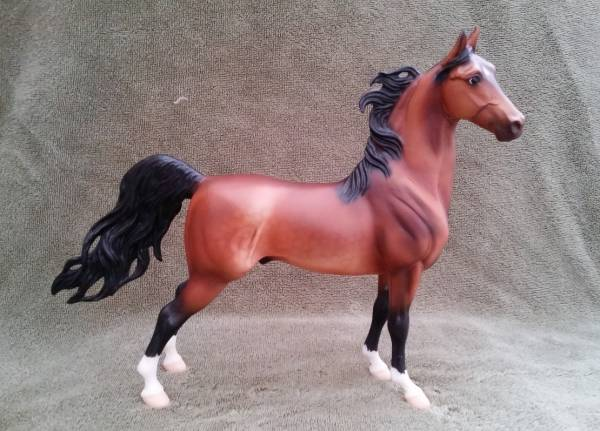 Edge of Glory - bay Saddlebred stallion