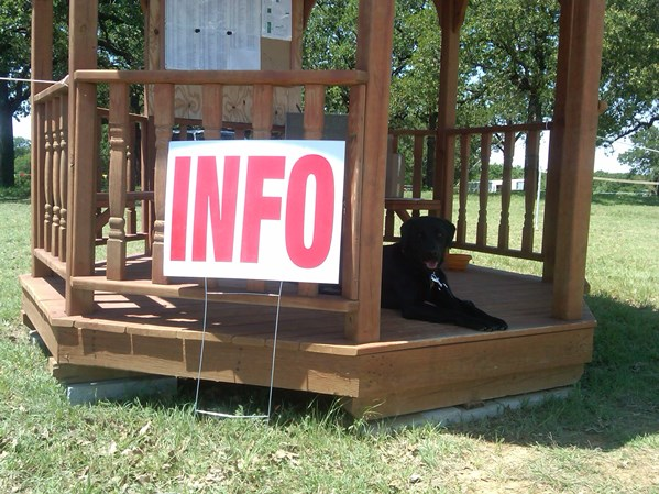 Horse Trials 1 - Grounds entrance - Ranger learning to be an ambassador for