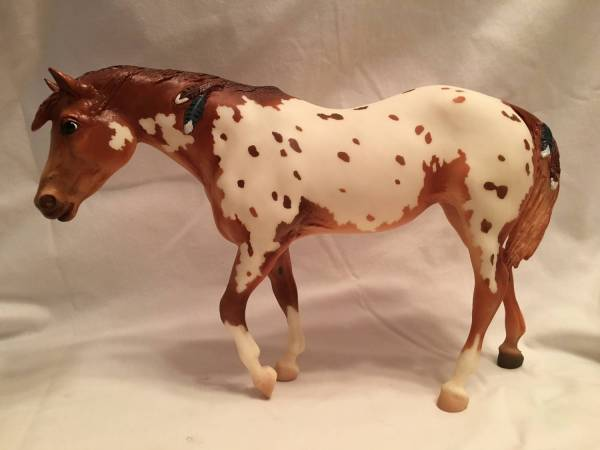 Native Dancer, Appaloosa Mare