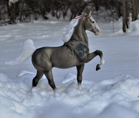 CongaCommander - ASB - Stallion - Smoke Grey - OF Breyer