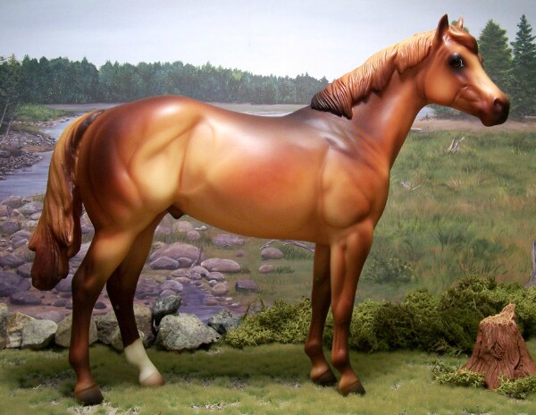 CHAMPION-Meteoric Rise - Chestnut, Mustang/QH, Gelding, OF PS