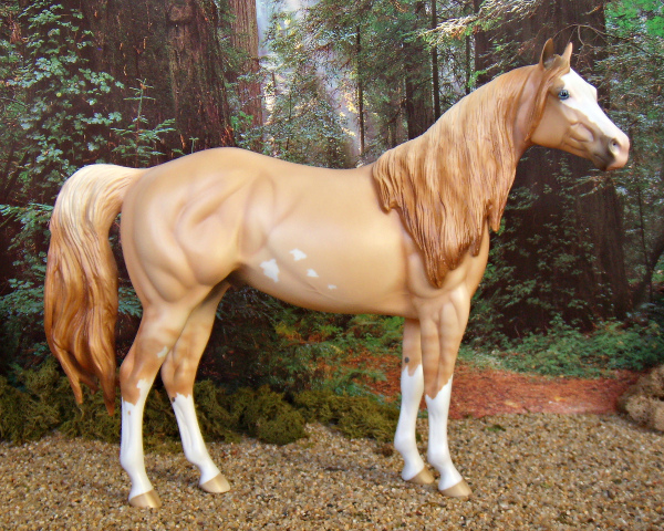 RESERVE CHAMPION Dunit Damnit - Red Dun Sabino, Paint, Stallion, OF PS