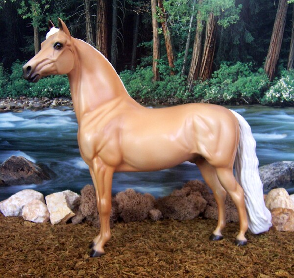 WhoaBgone Impulse - Palomino, Morgan, Stallion, OF PS