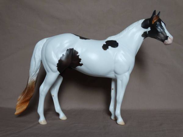 American Indian Horse - Stallion, Mulberry Grey Tobiano