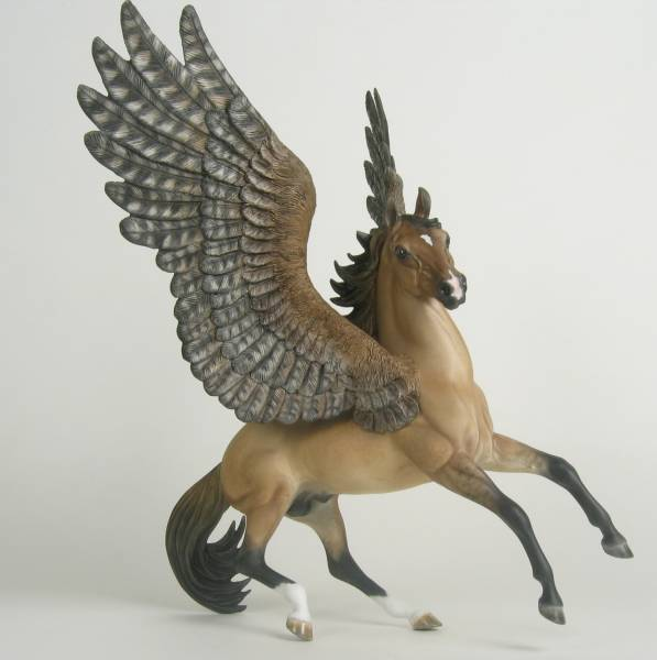 Raptor-wing pegasus stallion