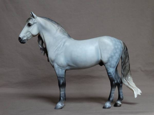 PRE Stallion - Dapple Grey