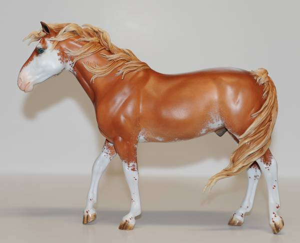 Ch. - Mustang Stallion - FT Manitou