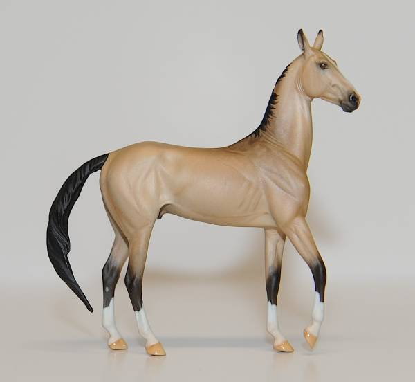 Akhal-Teke Stallion - FT Javelin