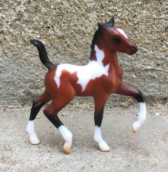 National Show Horse Filly