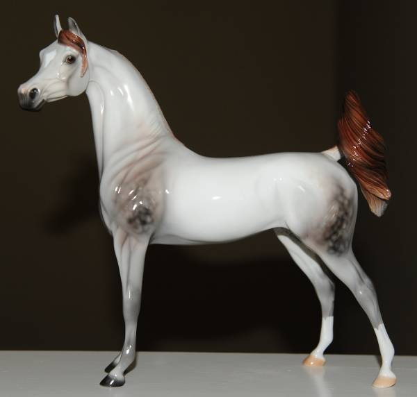 Arabian Mare - FT Sumptuous