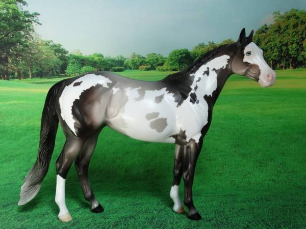 Paint Mare - Rose Grey Overo